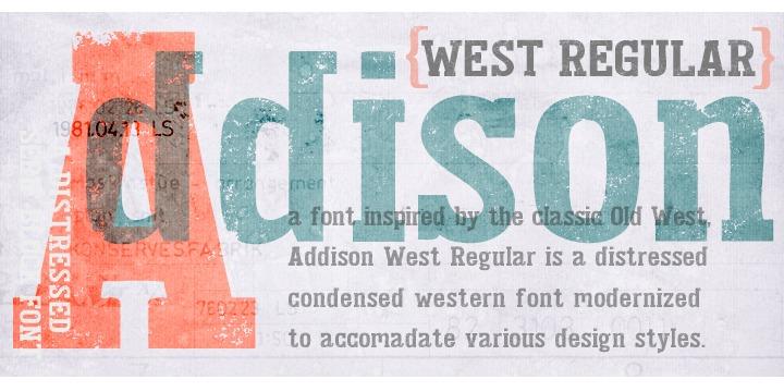 Addison Circus Drop