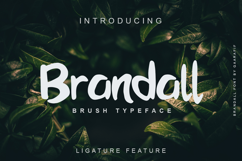 Brandall Personal Use