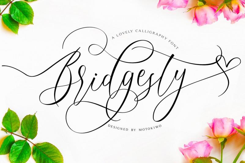 Bridgesty script
