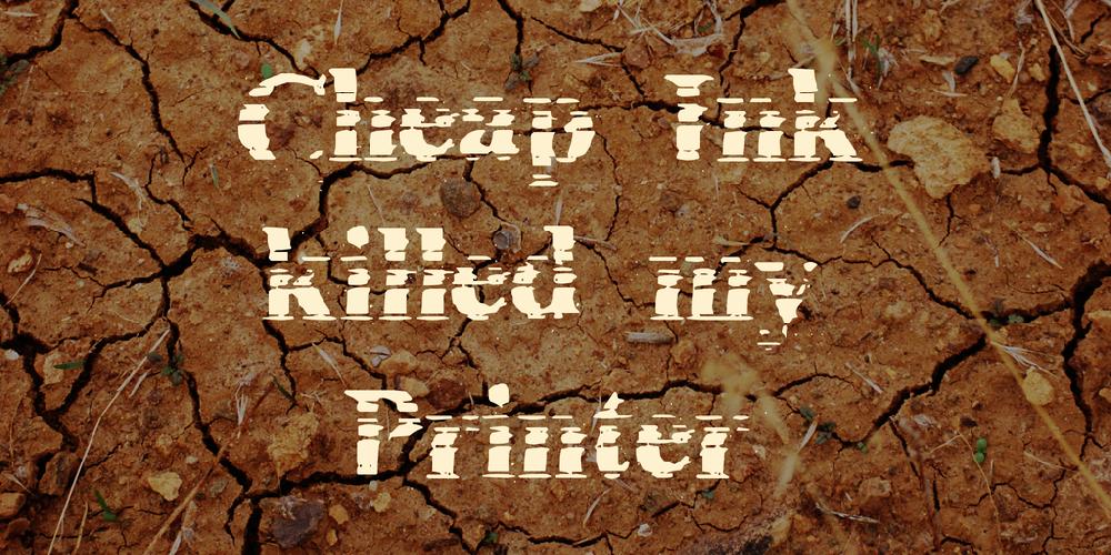 Cheap Ink killed my Printer