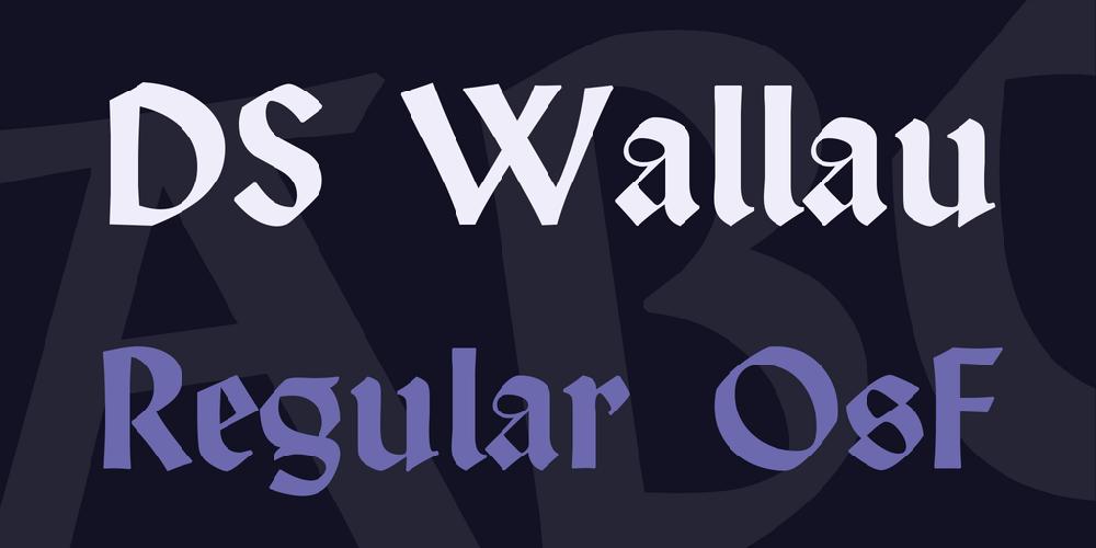 DS Wallau