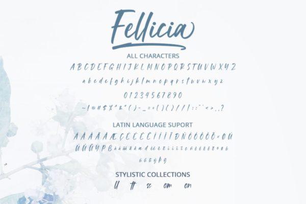 Fellicia Personal Use