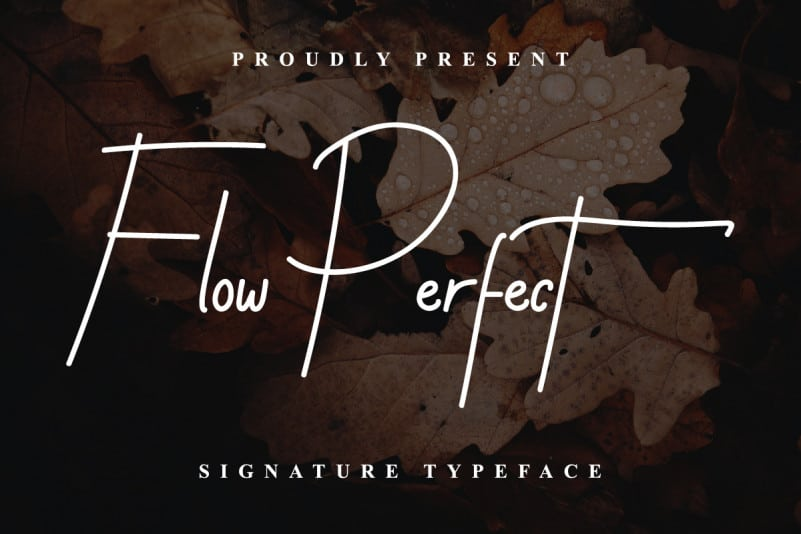 Flow Perfect Demo