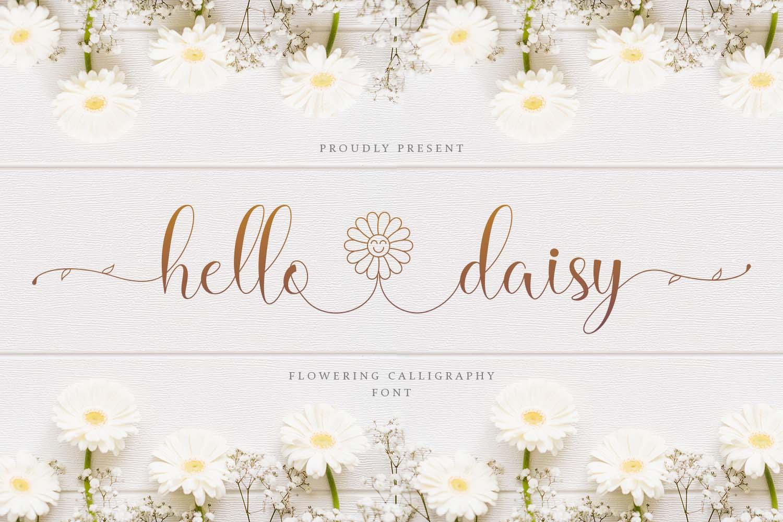Hello Daisy