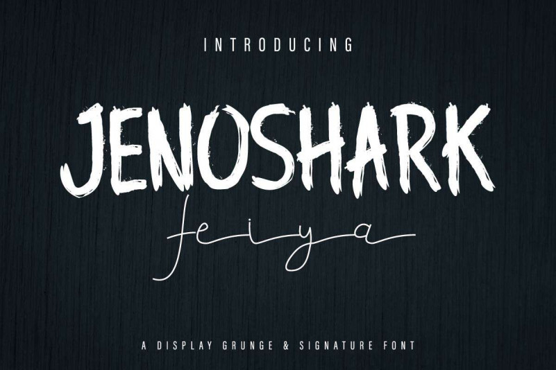 Jenoshark Feiya Demo Display Grunge