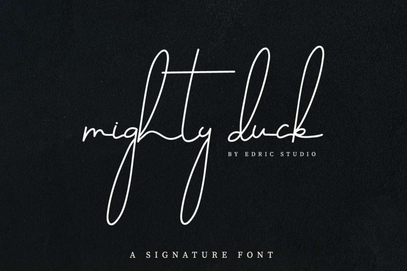 Mighty Duck Demo