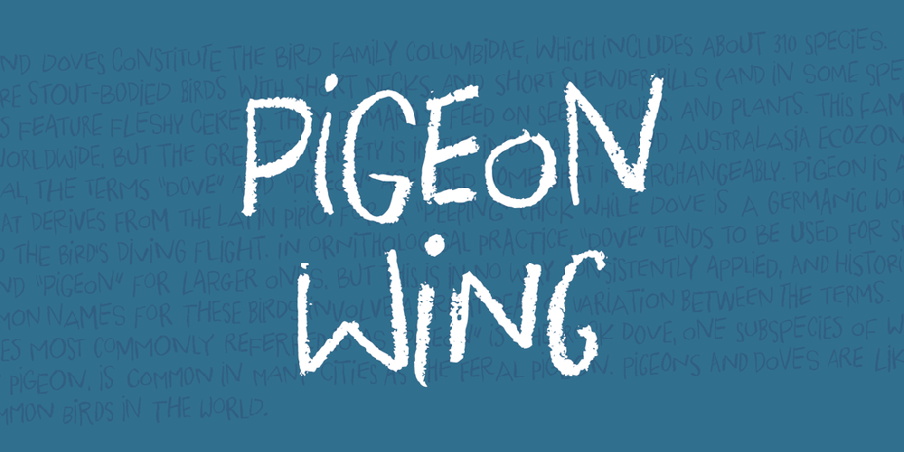 Pigeon Wing DEMO