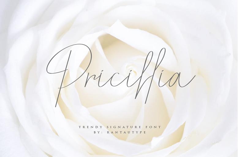 Pricillia script italic