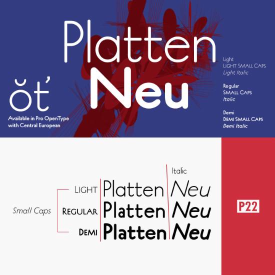 P22PlattenNeu-Italic