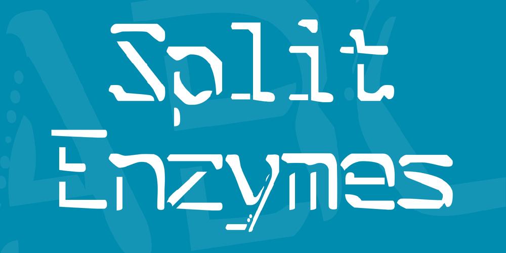 Split Enzymes