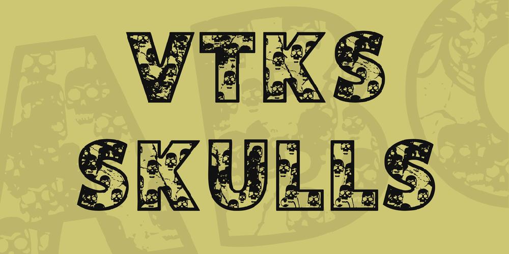 VTKS SKULLS