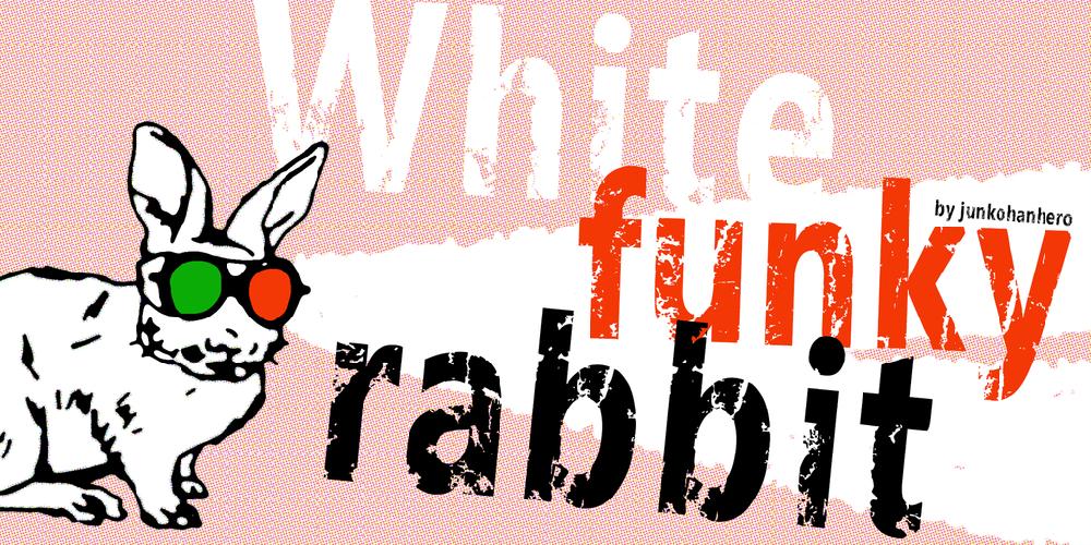 White funky rabbit